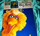 """""""Pin"""" the Tail on Big Bird"""