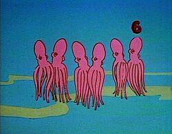 6Octopus