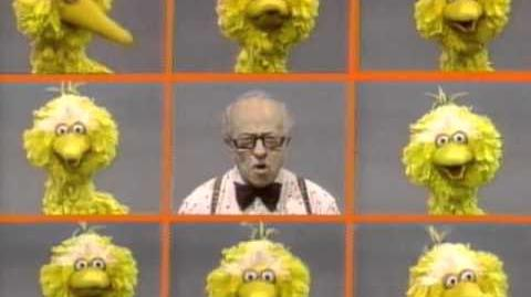 Big Bird's names for Mr