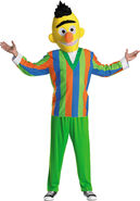 Adult Bert-Costume