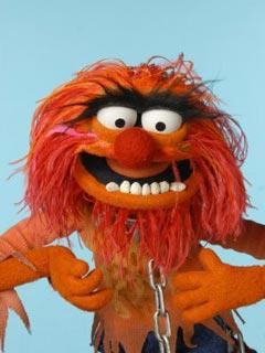 File:TF1-MuppetsTV-PhotoGallery-44-Animal.jpg