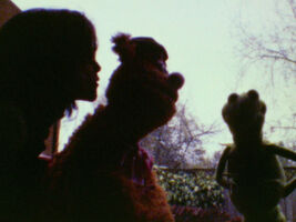 Kiss Amy van Gilder and Fozzie