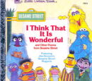 I Think That It Is Wonderful (book)