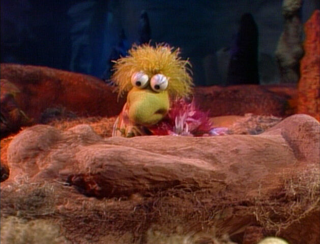 File:Mudwell-Lizard-Cocoon.jpg