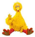 BigBird-sitting