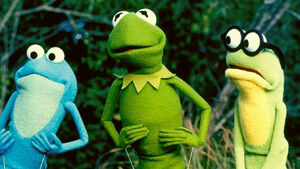 Kermit-s-swamp-years-original