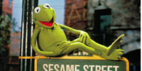 Kermit the Frog on Sesame Street