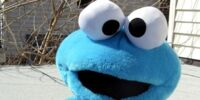 Cookie Monster plush (Tyco)