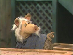 2995-Pig