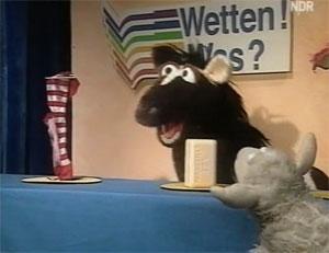 File:Wettenwas-socks.jpg