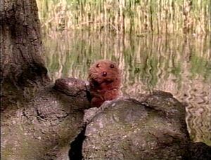 PlayAlong-Groundhog