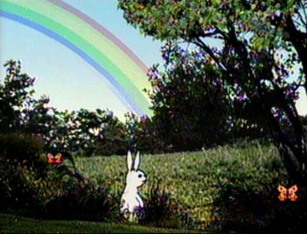 File:RabbitWeather.jpg
