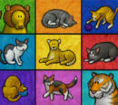 Elmo's World: Cats