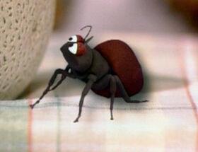 Ant-sesame