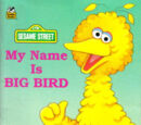 My Name Is Big Bird