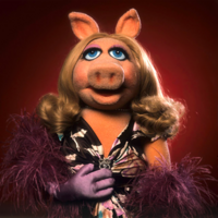 TMS-Piggy