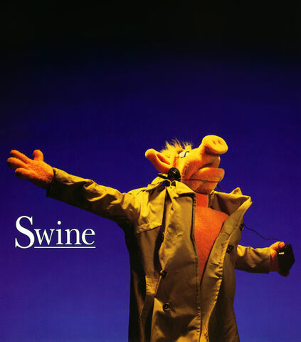 File:Swine-shine.jpg
