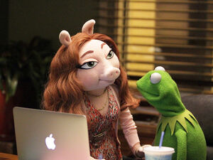 Denise and Kermit laptop