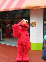 Elmo sp