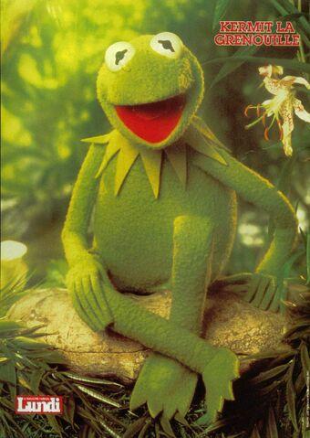 File:Kermit.JPG
