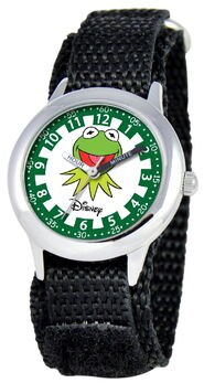 Ewatchfactory 2011 kermit stainless steel time teacher watch