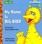 My Name Is Big Bird