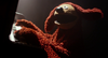 Muppets Most Wanted Teaser 11