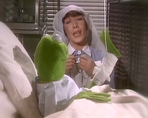 Kermit proposes to a nun
