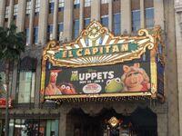 Muppets el capitan