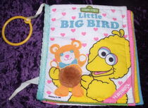 Little Big Bird