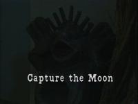 CaptureTheMoon
