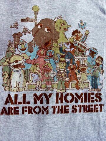 File:Tshirt-sesamehomies.jpg