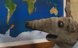 Antarctica-ollie