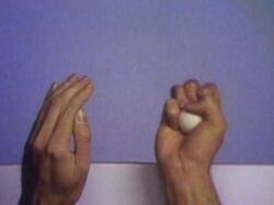 1257-Hands
