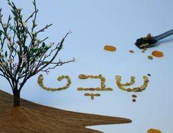 Shalom15-09