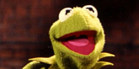 Most recurring characters of The Muppet Show