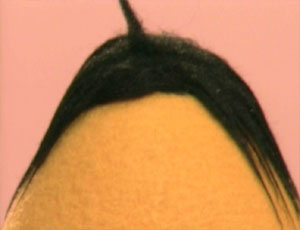 File:Ewhair-homevideo.jpg