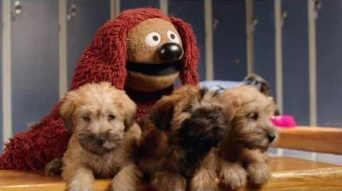 Muppets Most Wanted at Animal Planet's 2014 Puppy Bowl - Pup Talk