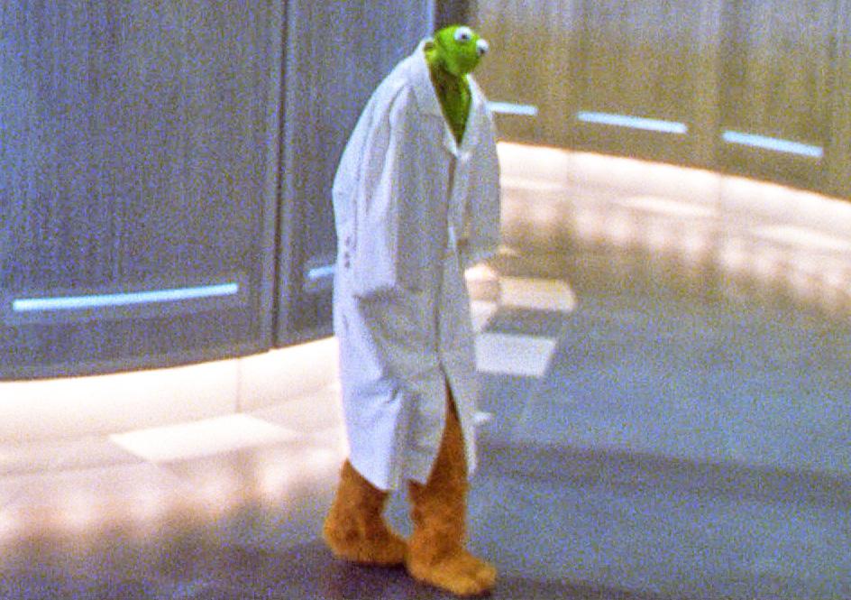 File:Kermitdoctor edited.JPG