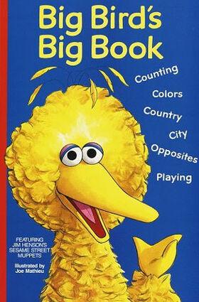 Book.bigbirdsbigbook