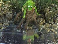 Song.tadpole