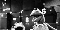 Muppet agelessness