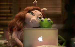 Kermit and Denise laptop