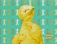 Ewskin-bigbird