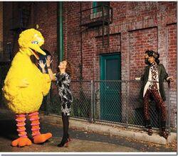 US Harper's Bazaar Big Bird and Diane