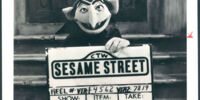 Sesame Street at Night?