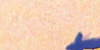 Elmo's World: Birds