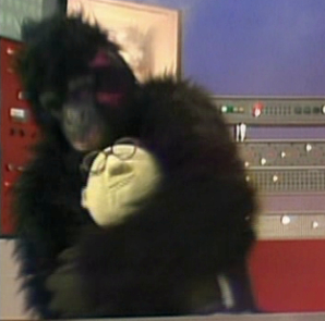 File:Gorillabunsen.jpg