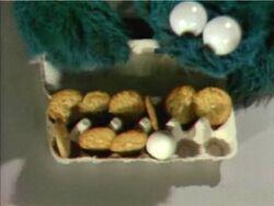 Cookie11cookies