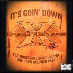 Linkin Park - Its Goin Down (Vinyl)